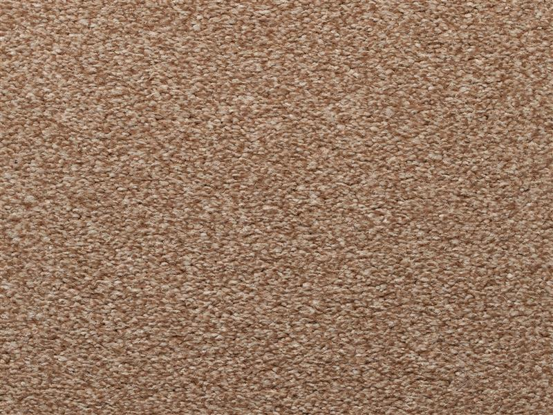 HassleFree Premier Carpet Butterscotch